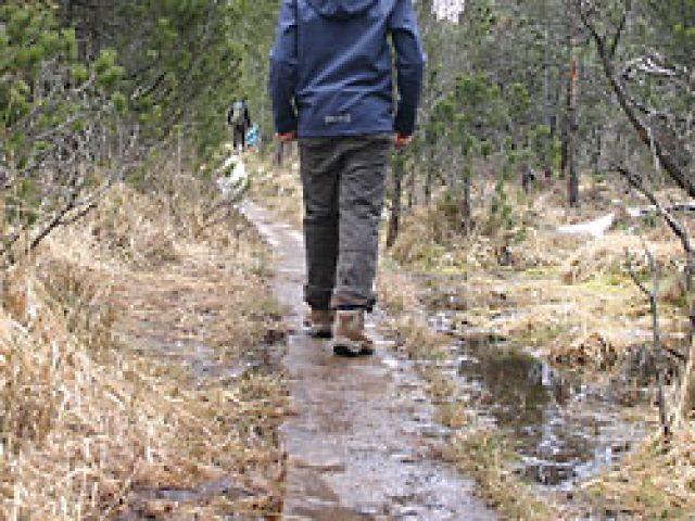 Brettleweg von Steingaden zur Wieskirch